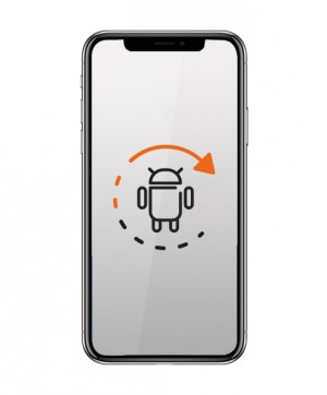 Software Aktualisierung - Apple Iphone X